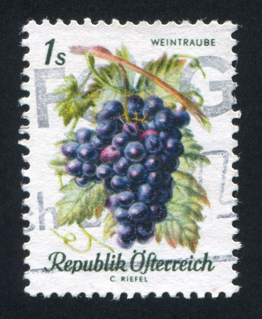 frondage: AUSTRIA - CIRCA 1966: stamp printed by Austria, shows Grapes, circa 1966