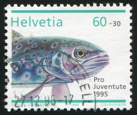 shrouds: SWITZERLAND - CIRCA 1995: stamp printed by Switzerland, shows River trout, circa 1995