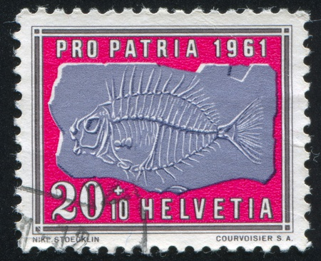 SWITZERLAND - CIRCA 1961: stamp printed by Switzerland, shows Petrified fish, circa 1961 Stock Photo - 18114463