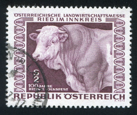 AUSTRIA - CIRCA 1967: stamp printed by Austria, shows Prize bull, circa 1967 Stock Photo - 18329654