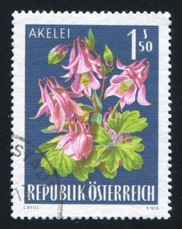 frondage: AUSTRIA - CIRCA 1966: stamp printed by Austria, shows Columbine, circa 1966 Editorial