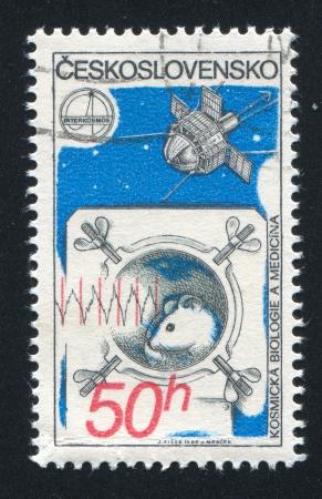 czechoslovakia: CZECHOSLOVAKIA - CIRCA 1980: stamp printed by Czechoslovakia, shows Mouse in Space, Satellite, circa 1980
