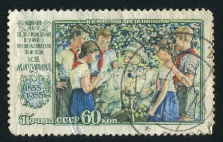 pioneers: RUSSIA - CIRCA 1956: stamp printed by Russia, shows I. V. Michurin with Pioneers, circa 1956