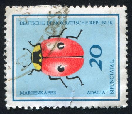 pronotum: GERMANY - CIRCA 1968: stamp printed by Germany, shows Ladybug, circa 1968