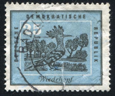 extant: Alemania - alrededor de 1959: sello impreso por Alemania, muestra Abubilla, alrededor de 1959