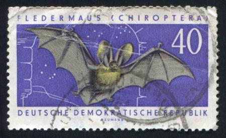 echolocation: GERMANY - CIRCA 1962: stamp printed by Germany, shows Bat, circa 1962 Editorial