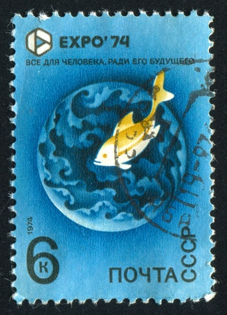 RUSSIA - CIRCA 1974: stamp printed by Russia, shows Fish in water, circa 1974