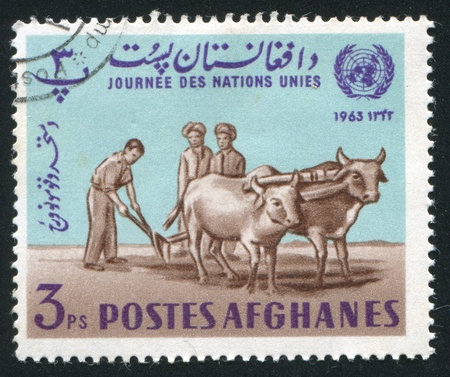 oxbow: AFGHANISTAN - CIRCA 1964: stamp printed by Afghanistan, shows Plowman, circa 1964