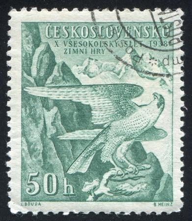 czechoslovakia: CZECHOSLOVAKIA - CIRCA 1938: stamp printed by Czechoslovakia, shows Peregrine Falcon Sokol Emblem, circa 1938