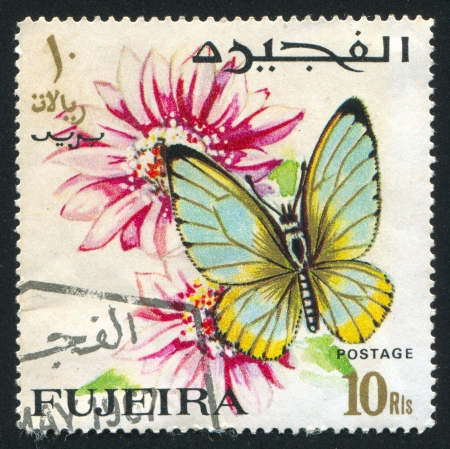 fujeira: FUJEIRA - CIRCA 1967: stamp printed by Fujeira, shows Butterfly and flower, circa 1967