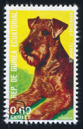 airedale terrier dog: GUINEA - CIRCA 1974: stamp printed by Guinea, shows Airedale terrier, circa 1974