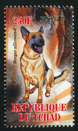 berger: CHAD - CIRCA 2013: stamp printed by Chad, shows dog, berger allemand, circa 2013