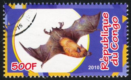 echolocation: CONGO - CIRCA 2010: stamp printed by Congo, shows Bat, circa 2010