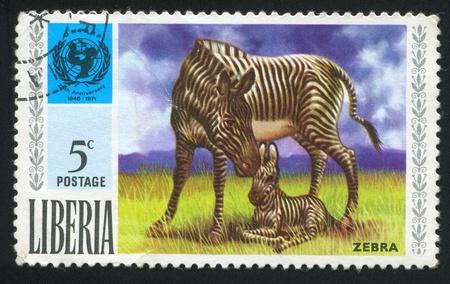 unicef: LIBERIA - CIRCA 1971: timbro stampato dalla Liberia, mostra UNICEF emblema e zebra, circa 1971