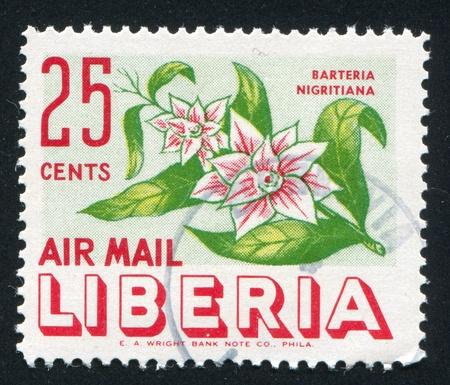 frondage: LIBERIA - CIRCA 1955: stamp printed by Liberia, shows Barteria negritiana, circa 1955