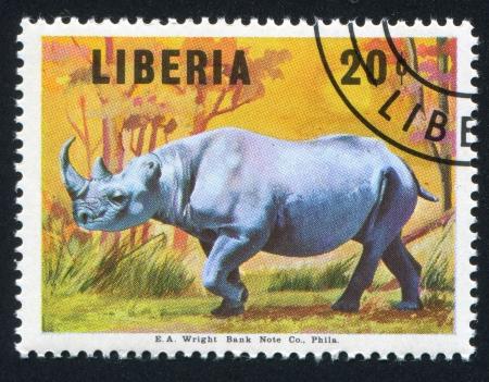 frondage: LIBERIA - CIRCA 1966: stamp printed by Liberia, shows Black rhinoceros, circa 1966