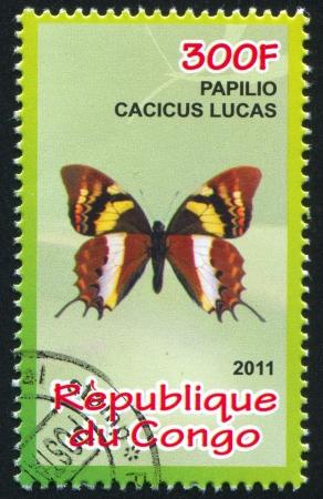 hindwing: CONGO - CIRCA 2011: stamp printed by Congo, shows butterfly, circa 2011 Editorial