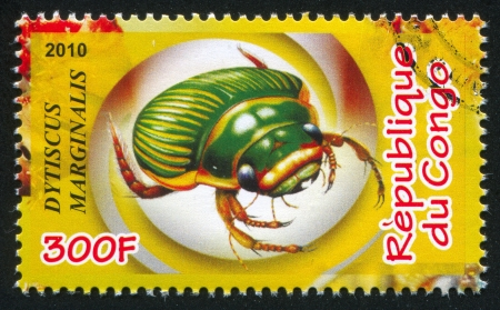 forewing: CONGO - CIRCA 2010: stamp printed by Congo, shows Great diving beetle, circa 2010 Editorial