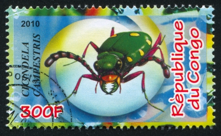tiger beetle: CONGO - CIRCA 2010: timbro stampato da Congo, mostra tigre verde scarabeo, circa 2010
