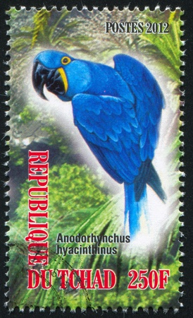 frondage: CHAD - CIRCA 2012: stamp printed by Chad, shows parrot, circa 2012 Editorial