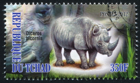 eyes cave: CHAD - CIRCA 2012: stamp printed by Chad, shows Rhinoceros, circa 2012