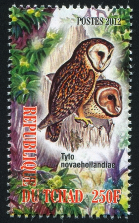 pecker: CHAD - CIRCA 2012: stamp printed by Chad, shows owl, circa 2012 Editorial
