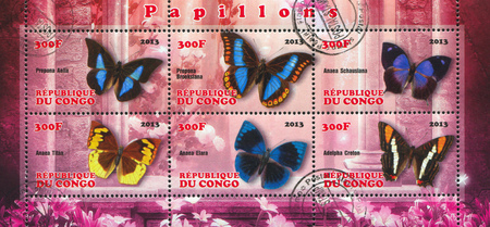 CONGO - CIRCA 2013: stamp printed by Congo, shows butterfly, circa 2013