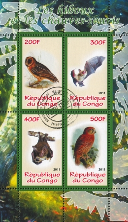 echolocation: CONGO - CIRCA 2011: stamp printed by Congo, shows Bird and bat, circa 2011