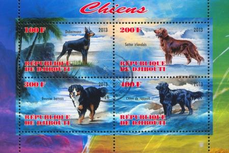 djibouti: DJIBOUTI - CIRCA 2013: stamp printed by Djibouti, shows dog, circa 2013 Editorial