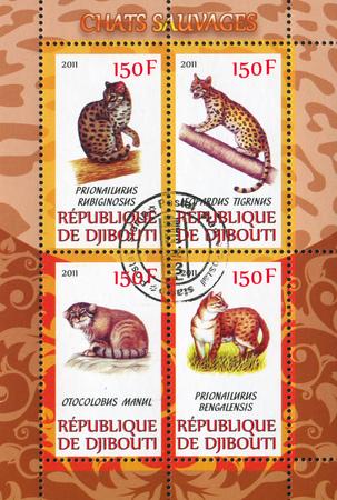 prionailurus: DJIBOUTI - CIRCA 2011: stamp printed by Djibouti, shows animal, circa 2011 Editorial