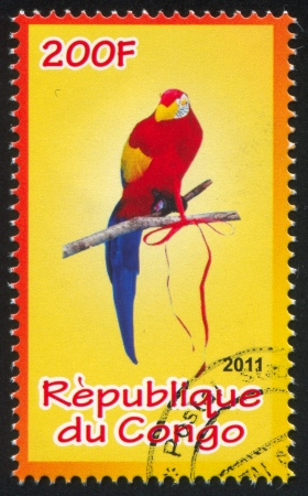 CONGO - CIRCA 2011: stamp printed by Congo, shows Parrot, circa 2011