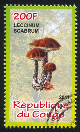 bosk: CONGO - CIRCA 2011: stamp printed by Congo, shows Brown cap boletus, circa 2011 Editorial