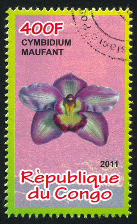 frondage: CONGO - CIRCA 2011: stamp printed by Congo, shows Orchid, circa 2011