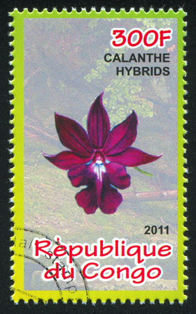 CONGO - CIRCA 2011: stamp printed by Congo, shows Orchid, circa 2011