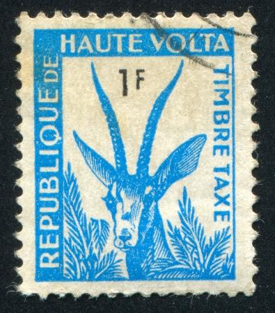 frondage: BURKINA FASO - CIRCA 1968: stamp printed by Burkina Faso, shows Gazelle, circa 1968