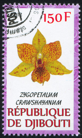 djibouti: DJIBOUTI - CIRCA 2012: stamp printed by Djibouti, shows flower, circa 2012