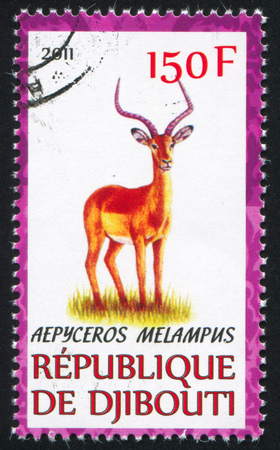 djibouti: DJIBOUTI - CIRCA 2011: stamp printed by Djibouti, shows Impala, circa 2011