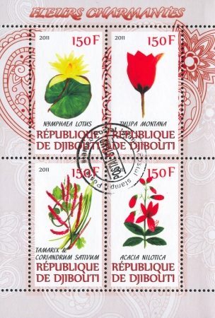 DJIBOUTI - CIRCA 2011: stamp printed by Djibouti, shows flower, circa 2011