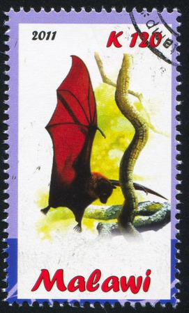 echolocation: MALAWI - CIRCA 2011: stamp printed by Malawi, shows Bat, circa 2011 Editorial