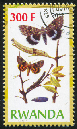 hindwing: RWANDA - CIRCA 2012: stamp printed by Rwanda, shows Butterflies, circa 2012