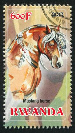 mustang horse: RWANDA - CIRCA 2013: stamp printed by Rwanda, shows Mustang horse, circa 2013