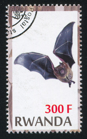 echolocation: RWANDA - CIRCA 2012: stamp printed by Rwanda, shows Bat, circa 2012 Editorial
