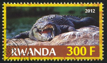 niloticus: RWANDA - CIRCA 2012: stamp printed by Rwanda, shows Crocodile, circa 2012 Editorial