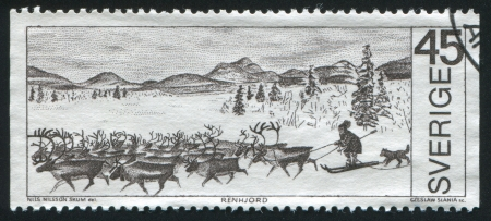 SWEDEN - CIRCA 1970: stamp printed by Sweden, shows Reindeer herd and herdsman, circa 1970 Stock Photo - 24618321