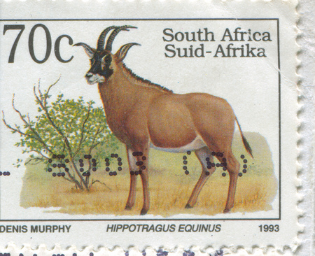 SOUTH AFRICA - CIRCA 1993: stamp printed by South Africa, shows Roan antelope, circa 1993