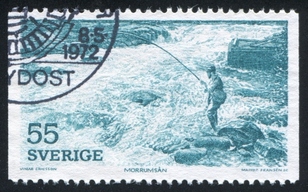 SWEDEN - CIRCA 1972: stamp printed by Sweden, shows Salmon fishing, circa 1972