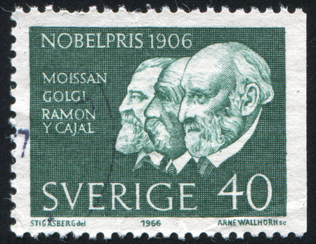 camillo: SWEDEN - CIRCA 1966: stamp printed by Sweden, shows Henri Moissan, Camillo Golgi and Santiago Ramon, circa 1966