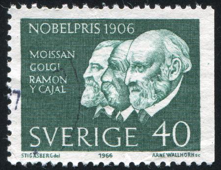 camillo: SWEDEN - CIRCA 1966: stamp printed by Sweden, shows Henri Moissan, Camillo Golgi and Santiago Ramon, circa 1966