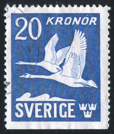 crown tail: SWEDEN - CIRCA 1942: stamp printed by Sweden, shows Swans, circa 1942 Editorial