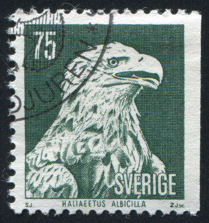 SWEDEN - CIRCA 1973: stamp printed by Sweden, shows White tailed sea eagle, circa 1973 Stock Photo - 24891593
